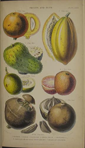 A History of the Vegetable Kingdom: RHIND,WILLIAM