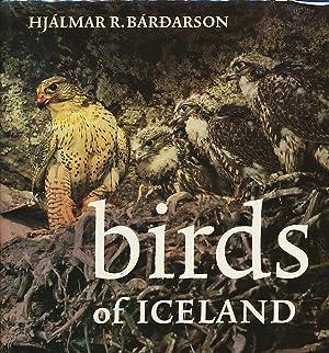 Birds of Iceland: Bárðarson, Hjálmar R. (Bardarson, Hjalmar)