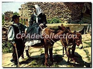 Carte Postale Semi Moderne La Corse Oasis