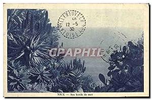 Carte Postale Ancienne Nice Ses bords de