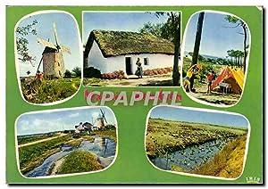 Carte Postale Moderne Marais Vendeens Moulin de