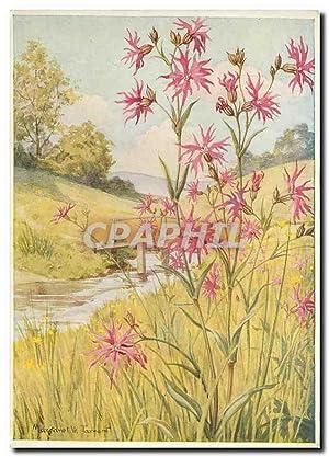 Carte Postale Moderne Fleurs Medici Wild Flower