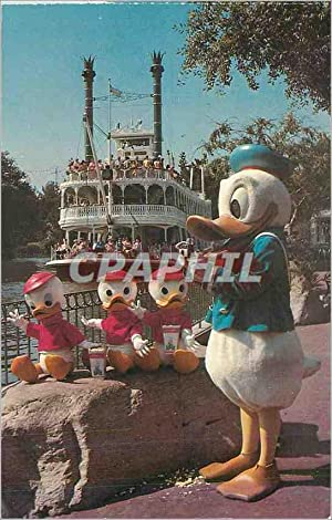 Carte Postale Moderne Donald and his Nephews Walt Disney