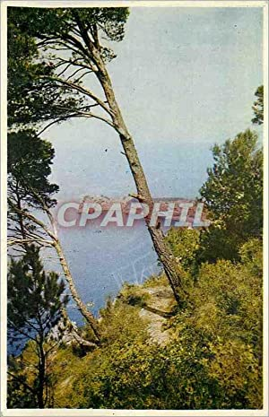Carte Postale Moderne Mallorca Espana La Foradada