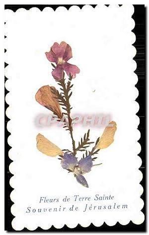 Carte Postale Ancienne Fantaisie Fleurs Flower Fleurs