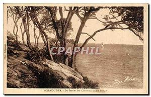 Carte Postale Ancienne Noirmoutier Du Sentier des