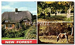 Carte Postale Moderne New Forest Cottage Rufus