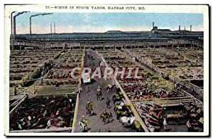 Carte Postale Ancienne Scene in Sock Yards Kansas City Mo