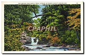 Carte Postale Ancienne The Arched Tree Over A Trout Stream In Pennsylvania's Dreamland