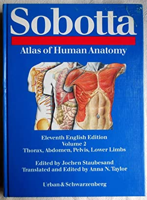 Atlas of human anatomy : Vol. 2., Thorax, abdomen, pelvis, lower limbs