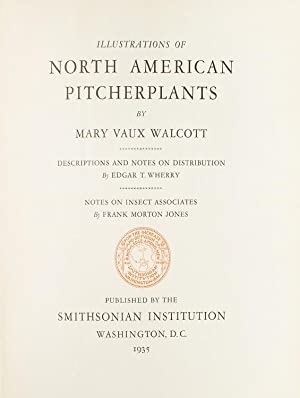 Illustrations of North American Pitcherplants. Descriptions and Notes on Distribution, by Edgar T...