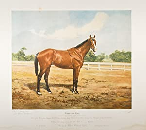 """Gallant Fox"""" Hand-colored print of the celebrated: Lloyd, Thomas Ivester"""