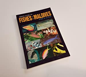 Photo Guide to Fishes of the Maldives: Kuiter, Rudie H