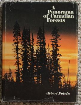 A Panorama of Canadian Forests