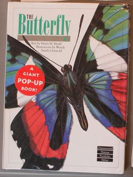 THE BUTTERFLY - Dimensional Nature Portfolio Series; (A Giant Pop-Up Book; Cover = Ancyluris Form...