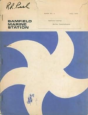 Bamfield Survey: Marine Invertebrates: Austin, William C.