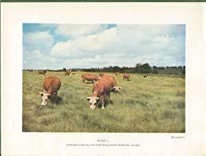 Grasses and Pastures of South Africa: Meredith, D., D. Sc.