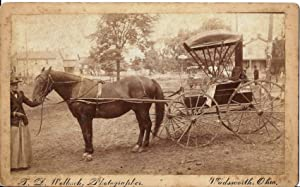 Horse Drawn Carriage. Photograph