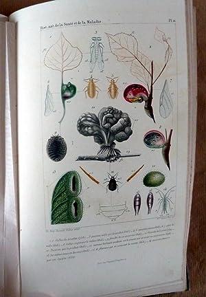 Histoire Naturelle de la Santé et de la Maladie chez les végétaux et chez les animaux et en ...