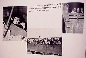 BRYCHA 1945-1948. HOME THROUGH THE VALE OF TEARS. OYF DEM LAYDNSVEG KEYN ERETZ YISRAEL = BI-NTIV ...