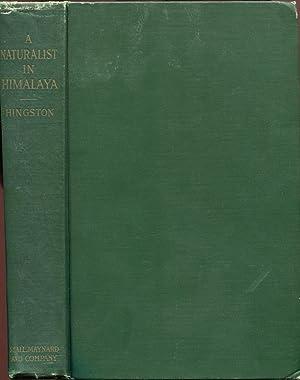 A Naturalist in Himalaya: HINGSTON, R. W. G.