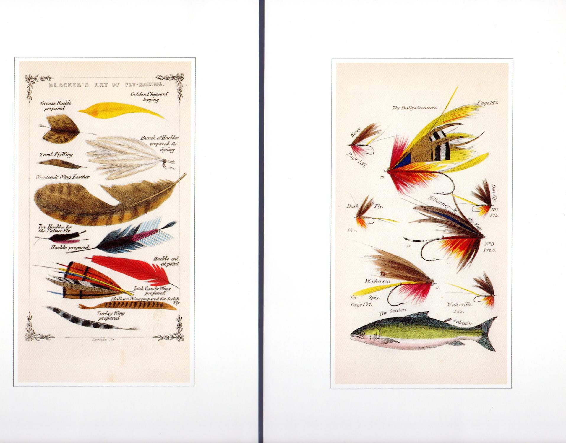The Portfolio of Eighteen Color Plates from