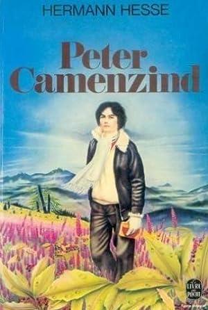 Peter Camenzind: Hesse Hermann