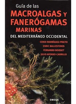 GUIA MACROALGAS Y FANEROGAMAS MARINAS DEL MEDITERRANEO OCCIDENTAL: RODRIGUEZ PRIETO, Conxi
