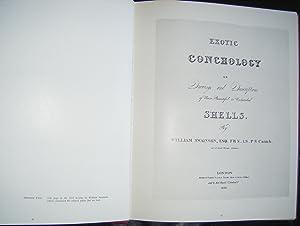 Swainson's Exotic Conchology: Swainson, William