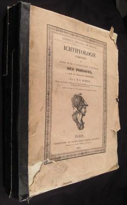 Ichthyologie Analytique ou Essai d'Une Classification Naturelle des Poissons, a l'Aise de...