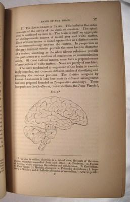 The Senses and the Intellect.: Bain, Alexander