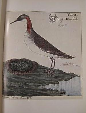 Indberetninger fra en Reise i Færøe 1781 og 1782: Svabo, J. Chr.; Djurhuus, N.