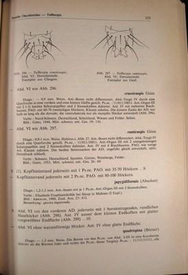 Collembolenfauna Europas: Gisin, Hermann