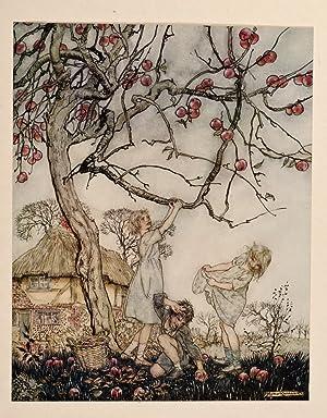 Dish of Apples, A.: RACKHAM, Arthur; PHILLPOTTS, Eden