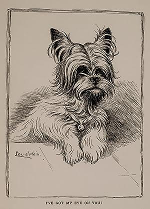 Louis Wain's Annual 1910-11: WAIN, Louis