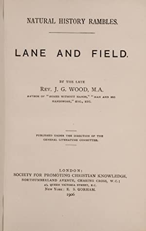 Natural History Rambles: Lane and Field: WOOD, Rev. J.G.