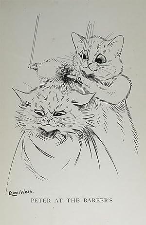 Cats: WAIN, Louis