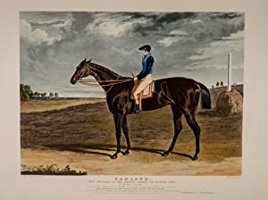 Portraits of the Winning Horses of the Great St. Leger Stakes at Doncaster: HERRING, John Frederick
