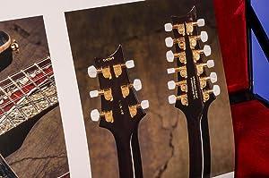 Guitar Collection, The: CARTER, Walter; MORGAN, Greg, photographer; PEDEN, John, photographer; ...