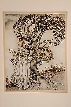 Printemps sur la Neige et d'autres Contes du bon vieux temps, Le: RACKHAM, Arthur, illustrator...