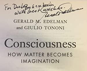 Consciousness. How matter becomes imagination.
