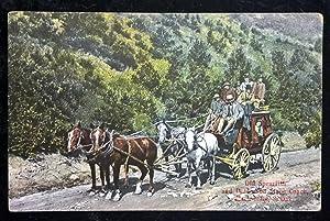 Longenecker Postcard; No 800 - Old Spearfish and Deadwood Stage Coach, Black Hills, S. Dak