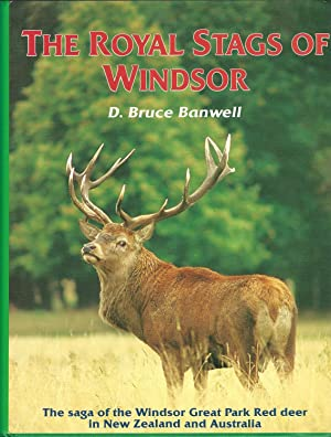 The Royal Stags of Windsor