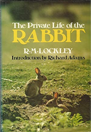 The Private Life of the Rabbit: An: R.M. Lockley