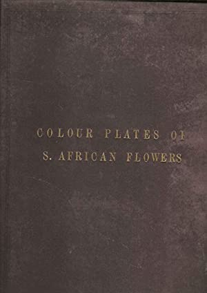 Colour Plates of S. African Flowers. Protected Wild Flowers