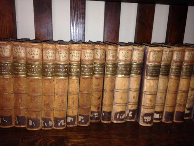 JARDINE'S THE NATURALIST'S LIBRARY - 40 Volume Set: Jardine, Sir William Bart.