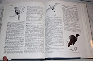A Dictionary of Birds: Campbell, Bruce; Lack, Elizabeth