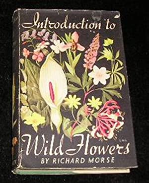 Introduction to Wild Flowers: Richard Morse