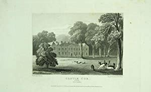 Original Antique Engraving Illustrating Castle Cor in Cork, The Seat of Edward Deane Freeman, Esq .