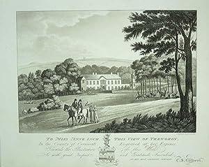 Original Antique Aquatint Engraved Print Illustrating Treworgy: An Original Antique